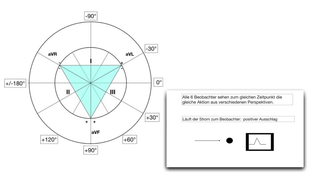 Herz-Kreislauf-System Archive - Clipdocs